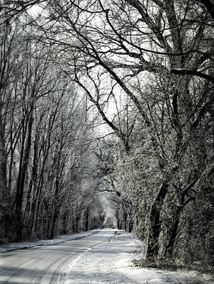 Photograph - Frozen Road by Wayne Meyer