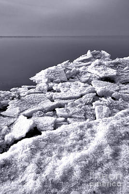 Photograph - Frozen Shore by Olivier Le Queinec