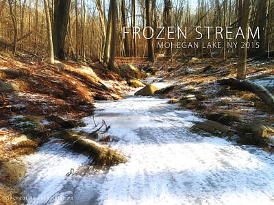 Photograph - Frozen Stream 2015 by Derek Gedney