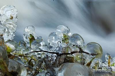 Frozen Wanderland I Art Print
