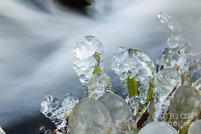 Photograph - Frozen Wanderland II by Katerina Vodrazkova