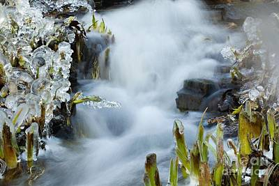 Photograph - Frozen Wanderland IIi by Katerina Vodrazkova