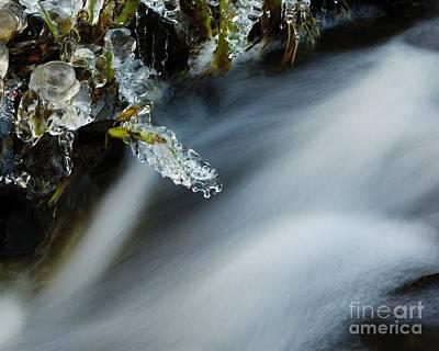 Photograph - Frozen Wanderland Iv by Katerina Vodrazkova
