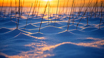 Alaska Photograph - Frozen Wonderland by Scott Slone