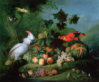 Fruit And Birds Art Print