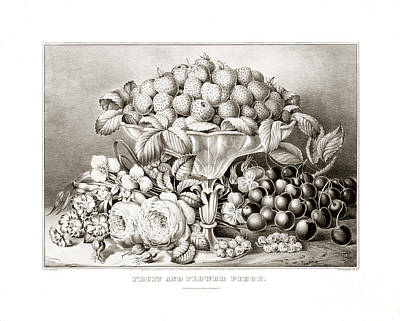 Antique Roses Vase Wall Art - Drawing - Fruit And Flower Piece - 1863 by Pablo Romero