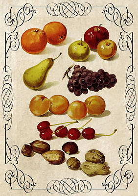 Vineyard Digital Art - Fruit And Nuts Kitchen Panel 1896 by Daniel Hagerman