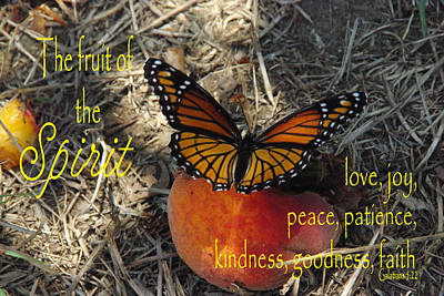 Fruit Of The Spirit Art Print by Robyn Stacey