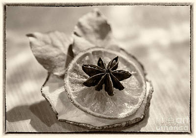 Dried Fruits Photograph - Fruit Ornaments Delights Black And White by Iris Richardson