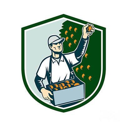 Agriculture Digital Art - Fruit Picker Worker Picking Plum Shield by Aloysius Patrimonio