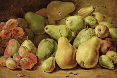 Pears Painting - Fruit Still Life by Johann Friedrich August Tischbein