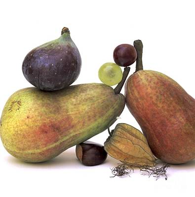 Variation Photograph - Fruit Variety by Bernard Jaubert