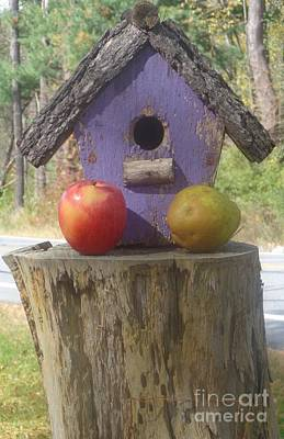Photograph - Fruity Home? by Christina Verdgeline