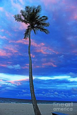 Ft Lauderdale Palm Art Print