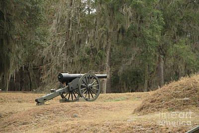 Ft. Mcallister Cannon 2 In Color Art Print