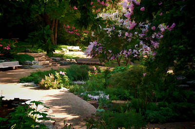 Photograph - Ft Worth Botanic Garden by Janet Maloy