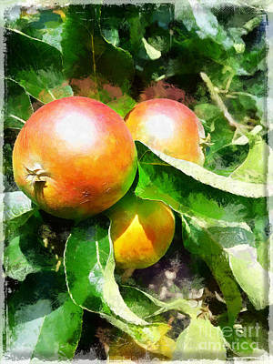 Painting - Fugly Manor Apples by Vix Edwards