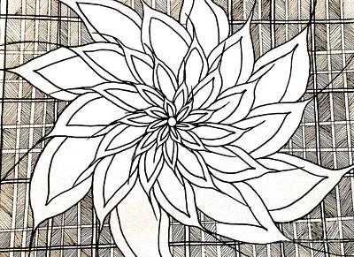 Still Life Drawings - Full Bloom Iv  by Anita Lewis