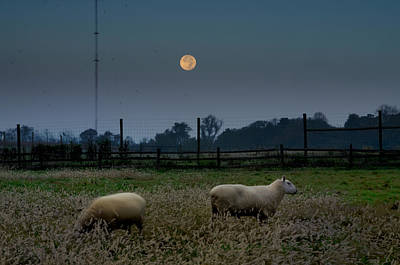 Full Moon At Erdenheim Farm Art Print