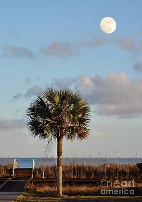 Full Moon At Myrtle Beach State Park Art Print