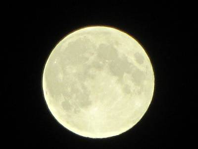Photograph - Full Moon Axis by Debbie Nester