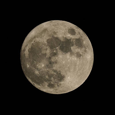 Moon Craters Photograph - Full Moon Dec 2014 by Ernie Echols