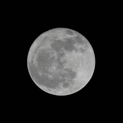 Photograph - Full Moon Feb by Ernie Echols
