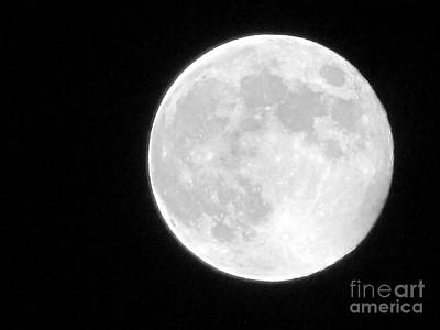 Full Moon Art Print by Gayle Melges
