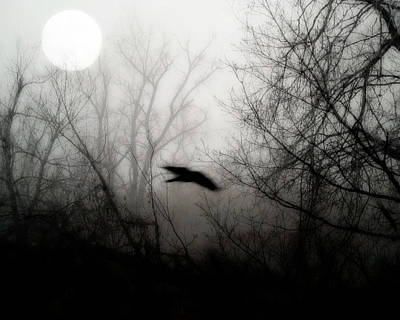 Full Moon Light Art Print by Gothicrow Images