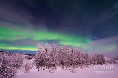 Snowy Night Photograph - Full Moon Lights by Priska Wettstein