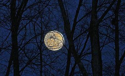 Photograph - Full Moon March 15 2014 by Michael Saunders