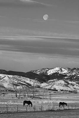 Abstract Airplane Art - Full Moon on the CO Front Range BW by James BO Insogna
