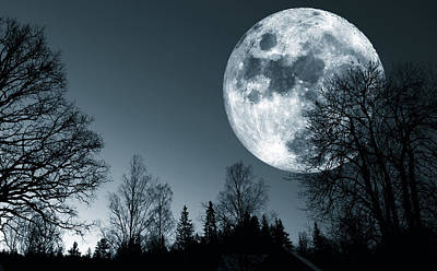 Full Moon Over Dark Forest Art Print by Christian Lagereek