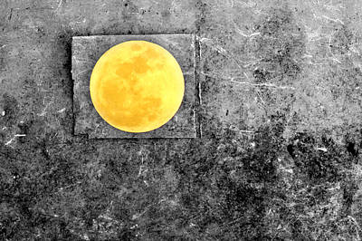 Photograph - Full Moon by Rebecca Sherman