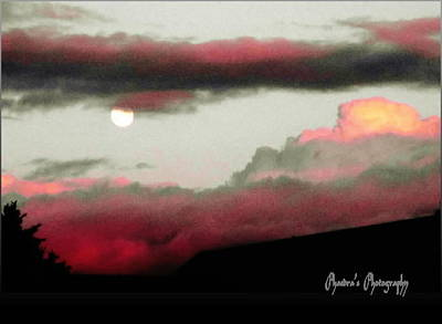 Photograph - Full Moon Rising by Sadie Reneau