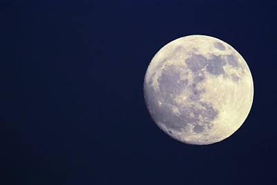 Photograph - Full Moon by Sjo