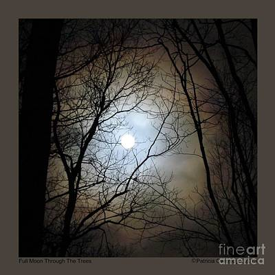 Full Moon Through The Trees Art Print