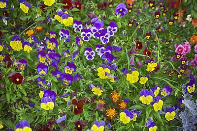 Full Of Flowers Art Print