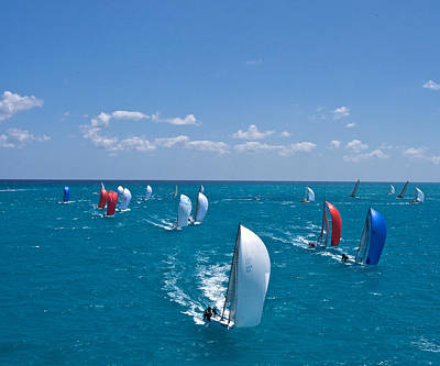 Full Sails Art Print by Steven Lapkin