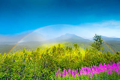Full Spectrum Rainbow Art Print