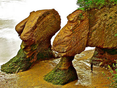 Green Socks On Fundy Feet At Hopewell Rocks-new Brunswick-canada  Original by Ruth Hager