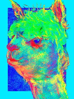 Alpaca Painting - Funky Alpaca Baby by Sue Jacobi
