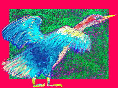 Anhinga Painting - Funky Anhinga Snake Bird Water Turkey by Sue Jacobi