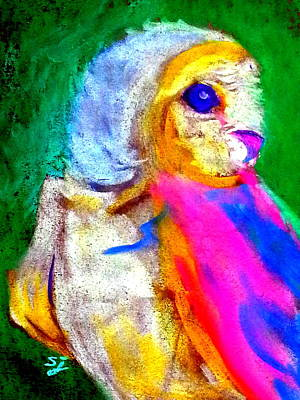 Pastel Barns Painting - Funky Barn Owl Art Print by Sue Jacobi