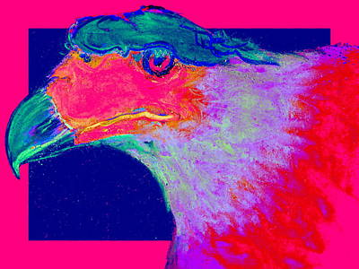 Colorful Eagle Painting - Funky Caracara Bird Of Prey Art Prints by Sue Jacobi