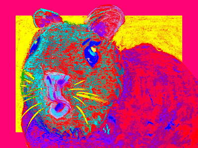 Hamster Painting - Funky Guinea Pig by Sue Jacobi