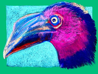 Hornbill Painting - Funky Hornbill Bird Art Prints by Sue Jacobi