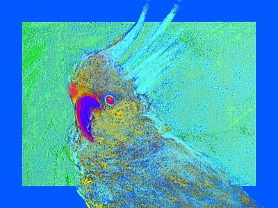Funky Sulphur Crested Cockatoo Bird Art Prints Print by Sue Jacobi