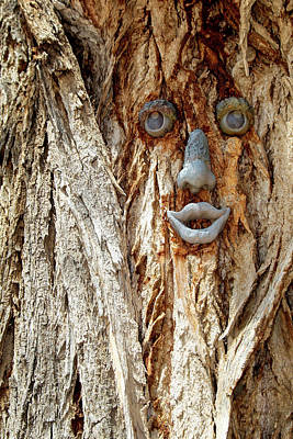 Gallup Photograph - Funny Face On A Tree Trunk, Gallup, New by Julien Mcroberts
