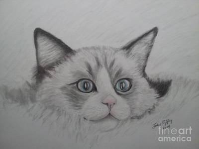 Blue And Gray Drawing - Fur Blankie by Julie Brugh Riffey